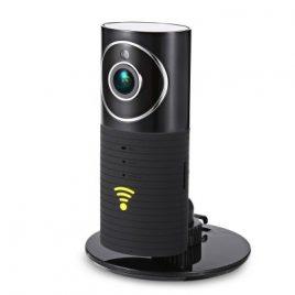 IP камера Clever Dog DOG-2W Wi-Fi